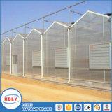Serre chaude en aluminium facilement assemblée de Sunhouse de structure de feuille de cavité de PC d'économie