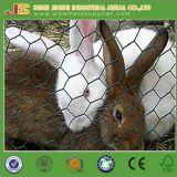 Rede de arame hexagonal à venda quente para gaiola de coelho de galinha