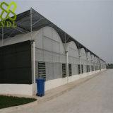 Casa verde galvanizada da folha plástica do frame de aço