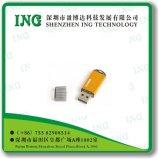 USB Drive/1g пластмассы, 2g, 4G, 8g, 16g, 32g, 64G/Metal USB Drive