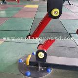 Matériel professionnel de remise en forme en plein air Fitness Rameur (HD-12301)