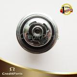 Regelbare Regelgever 96130880 van de Druk van de Brandstof voor de Sedan Cielo 1.5 van GM Daewoo Nexia
