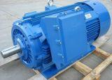 Motore elettrico ad alto rendimento 800kw-2 di bassa tensione Y2