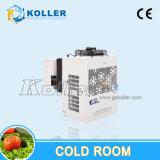 O quarto frio com Mono-Obstrui a unidade de condensação
