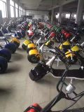 """Das rodas elétricas adultas sem escova do """"trotinette"""" 2 dos Cocos 800With1000W da cidade """"trotinette"""" elétrico de Harley"""