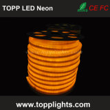 Impermeável 230V 120V 24V Cor Changing LED Neon Rope Light