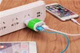 5V 2.1A удваивают заряжатель стены USB для всех видов телефонов