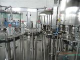 SGS Plastic Fles rxgf50-50-15 Het Vullen van het Vruchtesap Machine