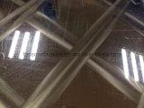 De Decoratieve Kleur van de Laser van het Blad van het Roestvrij staal van Topson voor het Decor van het Huis