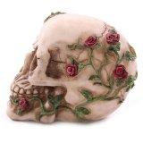 Lifesize 1: 1 Crânio humano Replica Resin Model Esqueleto médico anatômico