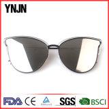 Солнечные очки горячего образца Ynjn сбывания приемлемо наградные