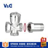 Подгонянный угловым вентилем угловой вентиль автошины латунный (VG-E12151)
