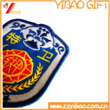 Regalo all'ingrosso di /Patches della zona del ricamo della polizia di Customze (YB-HR-376)