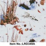 ベストセラー水転送の印刷のフィルムの錯覚パターンNo. Lrd348A