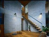 Villa prefabbricata economizzatrice d'energia dell'acciaio dell'indicatore luminoso della costruzione