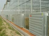 Цыплятина воздушных потоков 44000m3/H дует/отработанный вентилятор парника/охлаждающий вентилятор