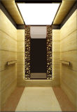 Ascenseur de passager de Fujizy de bon prix
