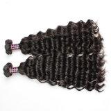 10A一等級の卸し売り人間の毛髪の拡張インドのバージンの毛