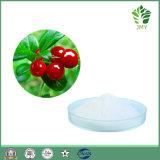 Alta qualità che imbianca l'estratto cosmetico dell'uva orsina degli ingredienti, Alfa-Arbutin 99%