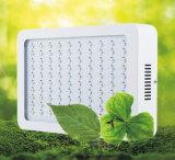 IP66 la PANNOCCHIA LED coltiva l'alto potere chiaro coltiva gli indicatori luminosi