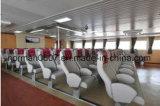 Lt.-006 de Zetels van de boot, de Zetel van de Passagier