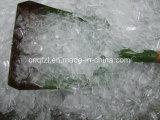 Platten-Eis-Maschine für Fische