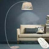 Licht van de moderne LEIDENE het Decoratieve Staand lamp van de Woonkamer