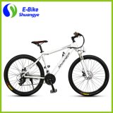 36V batterie cachée Mountain Electric Bicycle