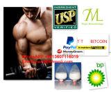Alto polvo puro hormonas esteroides/Tb500 del péptido para promover la cura