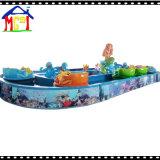 물 재미를 위한 8개의 오락 배를 가진 대양 편류