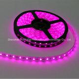 高い明るさのピンクカラーIP20 SMD5050チップ30LEDs 7.2W DC24V LEDストリップ