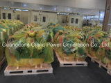 Elektrischer Generator Cummins-6bt 80kw mit zweijähriger Garantie