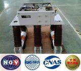 Disjoncteur d'intérieur ISO9001-2000 de vide de HT Zn12-40.5