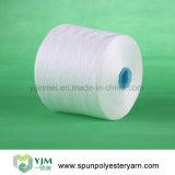 Filato 100% della fibra di graffetta poli per la fabbricazione del filato cucirino