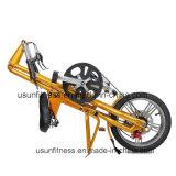 Bike новой конструкции складывая с ценой по прейскуранту завода-изготовителя (NY-FB001)