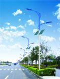 Sonnenenergie-Straßenlaterne40W der Qualitäts-IP65