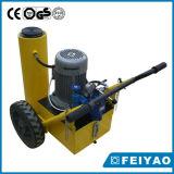 Motor eléctrico de la canalización vertical de Pow'r de la serie de Rjl para el coche
