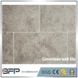 طبيعيّ [ستون ولّ] [كلدّينغ] صفراء حجر جيريّ داخليّة [30إكس60] جدار قرميد