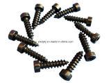 Schrauben- und Schrauben-/Bolt-Schraube/Schraubbolzen/Edelstahl-Schraube für Großverkauf