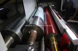 La impresora flexográfica del PLC con vídeo revisa el sistema