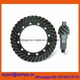 Ingranaggi conici a spirale Mc863589 MB005252 Mc804124 Fv413 PS120 4D34
