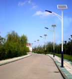 Weelderige Hoogste ZonnedieStraatlantaarn Haochang in Jiangsu China wordt gemaakt