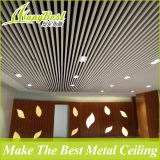 Diseños falsos del techo del restaurante de aluminio de la manera