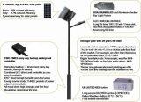Lampe de rue solaire de qualité 60W 80W