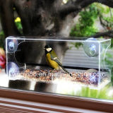 Het beste Verkopende AcrylNest van de Vogel met 4 Op zwaar werk berekende Zuignappen