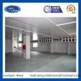 De Koude Opslag van het pakhuis/Koele Zaal met Planken