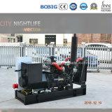тип тепловозный генератор 8kw 10kv Yangdong открытый с хорошим качеством