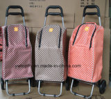 Carrello pieghevole di acquisto delle rotelle del peso leggero 2 con il sacchetto più freddo per il picnic e l'acquisto