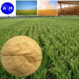 Aminoácidos de la materia orgánica del alto aminoácido del nitrógeno de los aminoácidos de la alta calidad altos