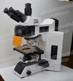 FM-Yg100無限光学系のけい光顕微鏡